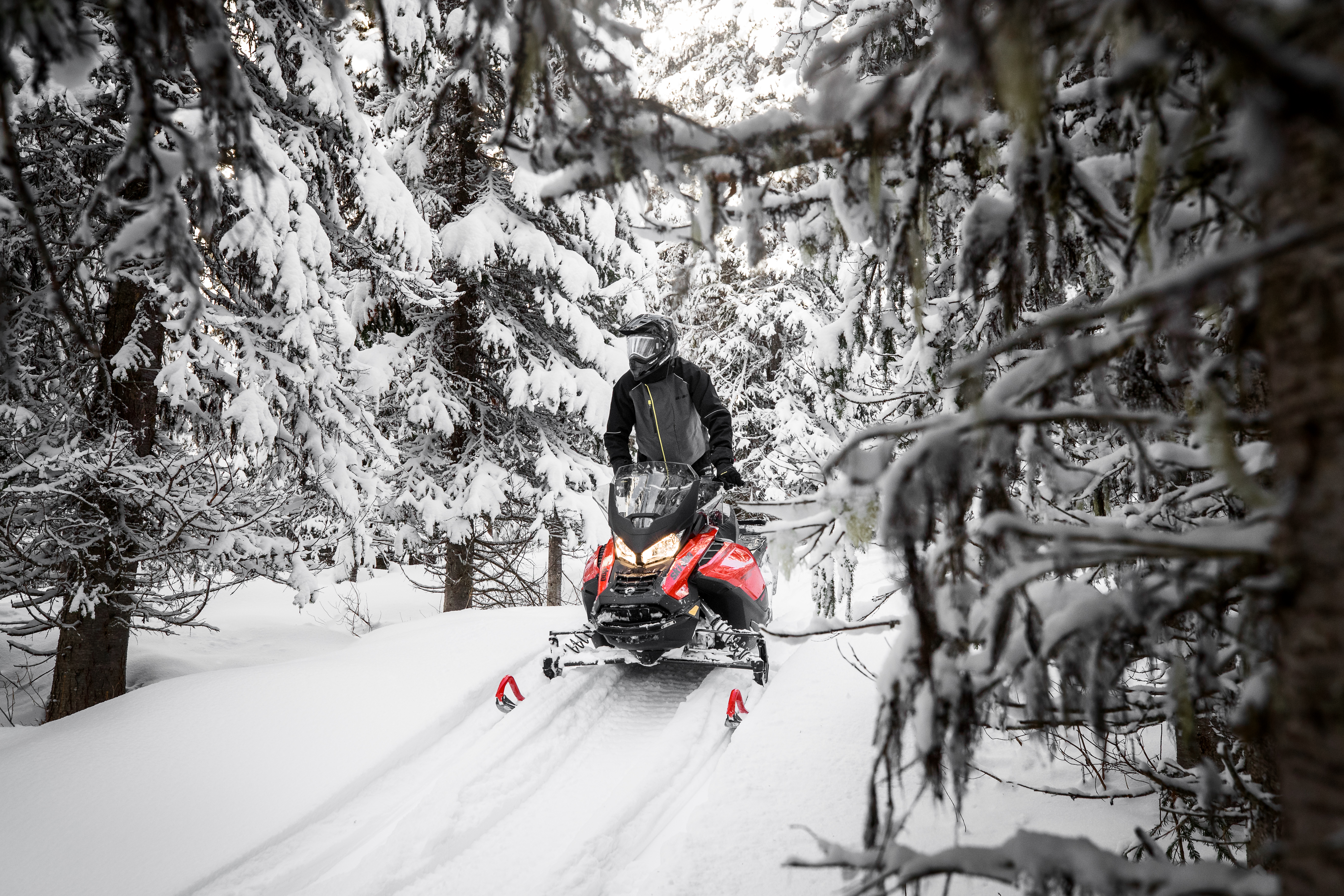 Navigating a path through the woods on a Ski-Doo snowmobile