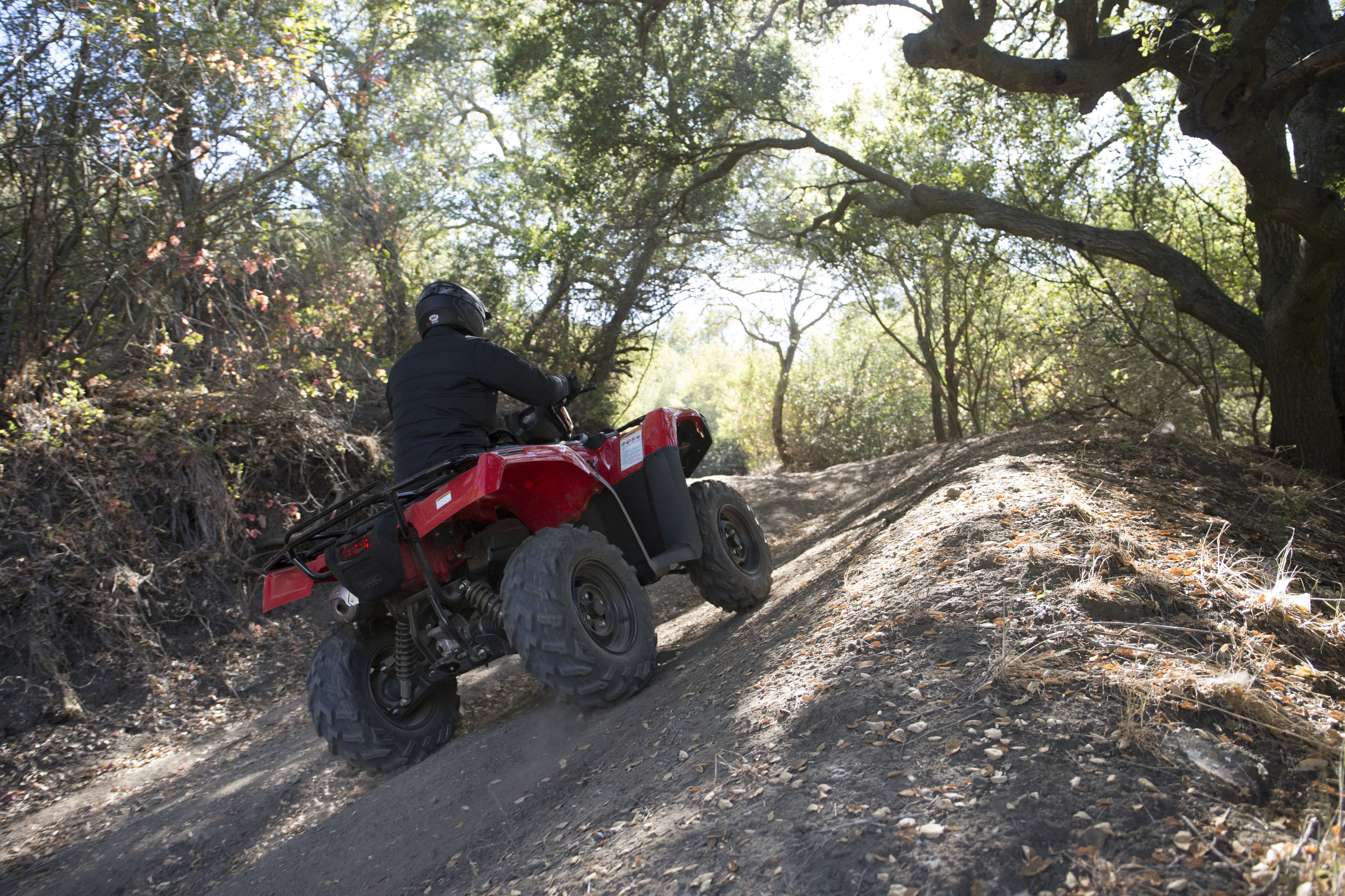 Honda® ATV going up a hill on a forest path.