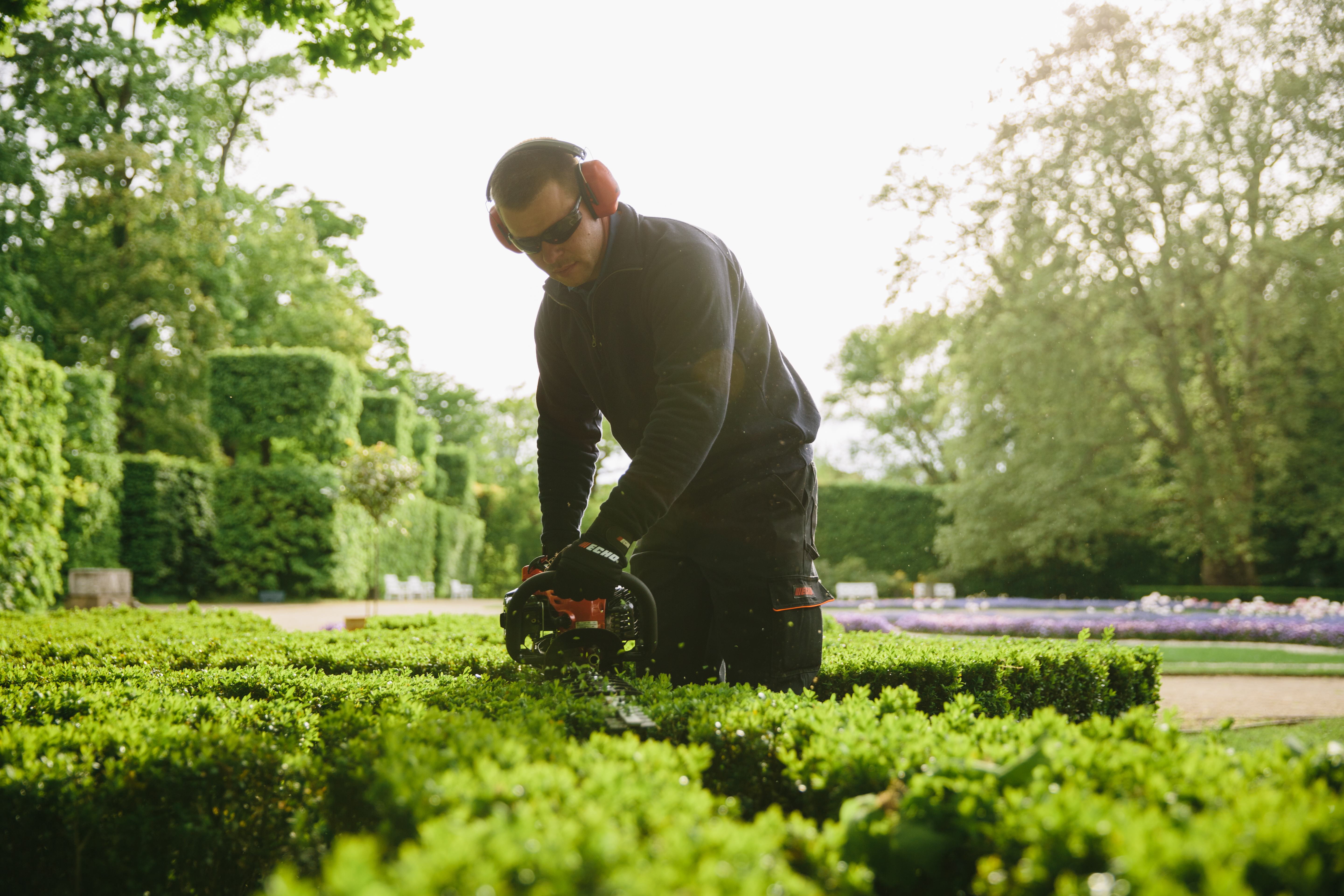 Man trimming hedges with an Echo hedge trimmer.