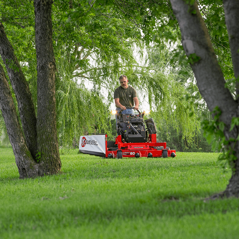 Cutting the grass between two trees