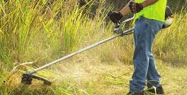 A man in a reflective vest uses ECHO brush cutters on tall grass.
