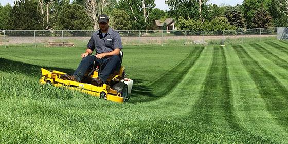 Mowing a large field with a Walker zero-turn mower