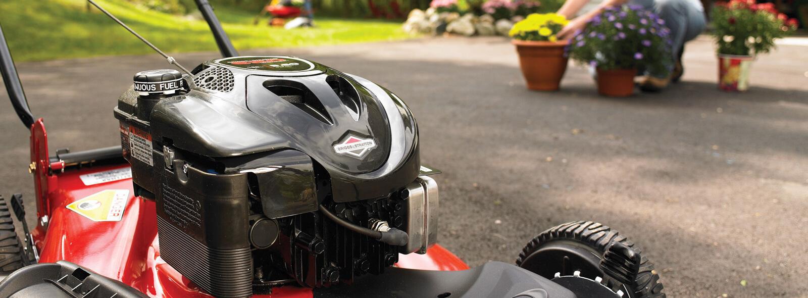 Briggs & Stratton® Engine