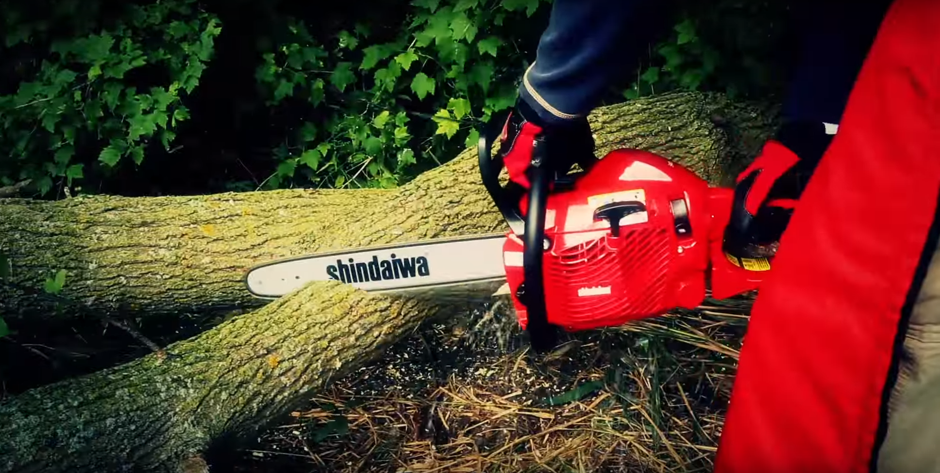 Shindaiwa Chainsaw in San Antonio Texas