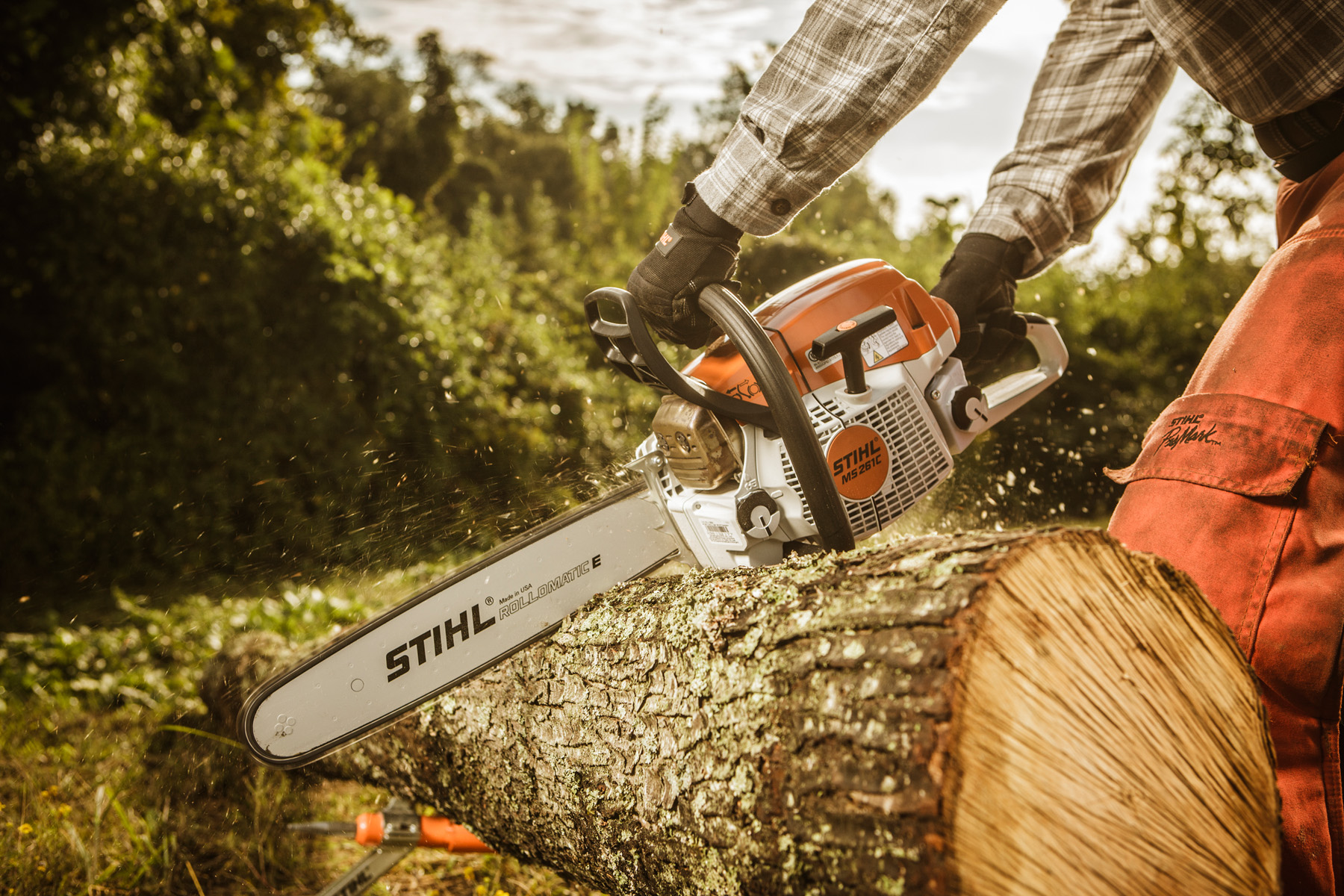 STIHL Chainsaw cutting tree