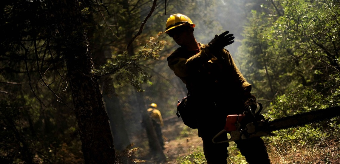 a worker in a forest with a chainsaw giving instructions to his team