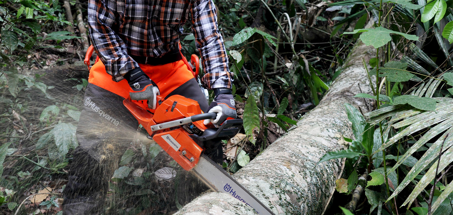 Cutting through a fallen tree with a Husqvarna chainsaw