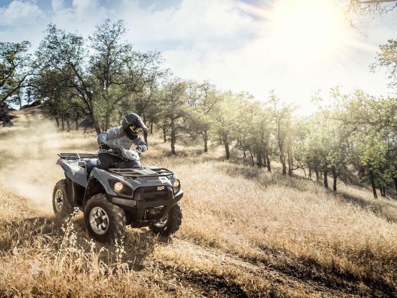 2019 Kawasaki® Brute Force® 750
