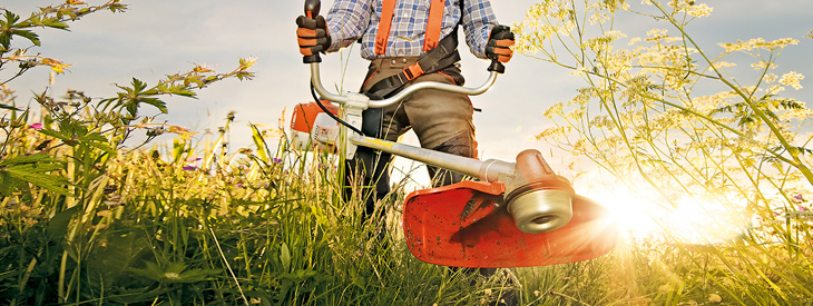 Taking down the tall grass with a STIHL trimmer.